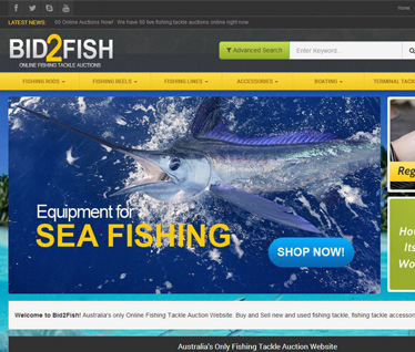 Viper Websites Bid2Fish